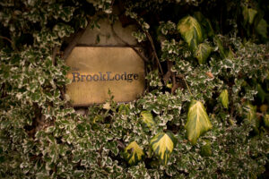 Brooklodge wedding photos 58
