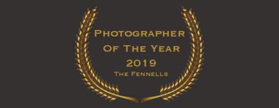 wedding photographer of the year