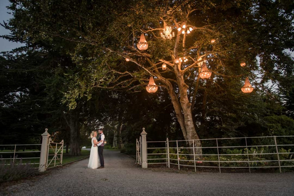 Bride and groom standing under the chandeliers on the tree at Ballymagarvey, one of the top wedding venues in Ireland