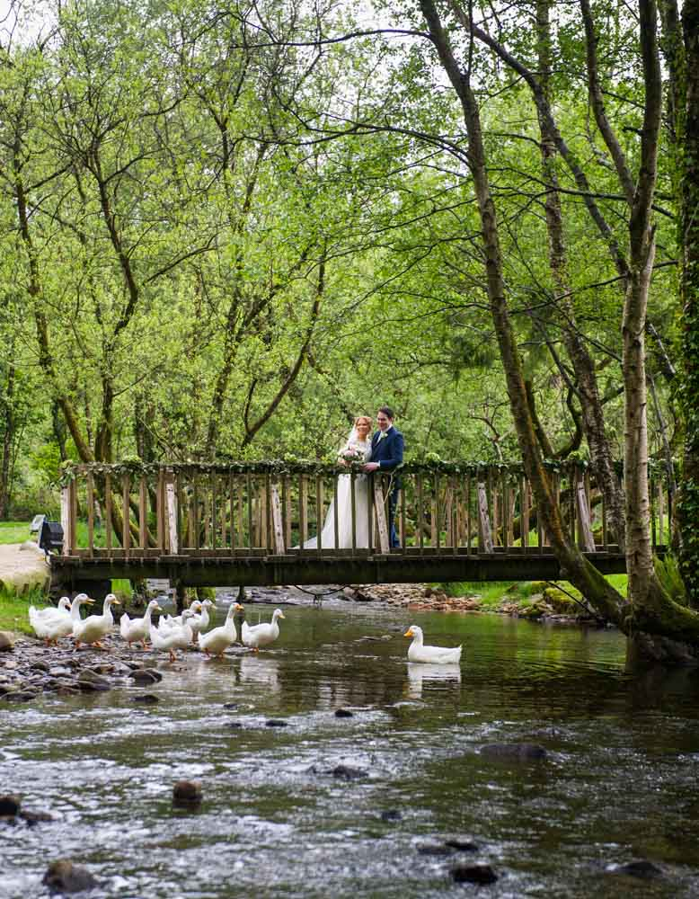 Bride and groom standing on the bridge with ducks in the river at the Brooklodge wedding venue in Ireland