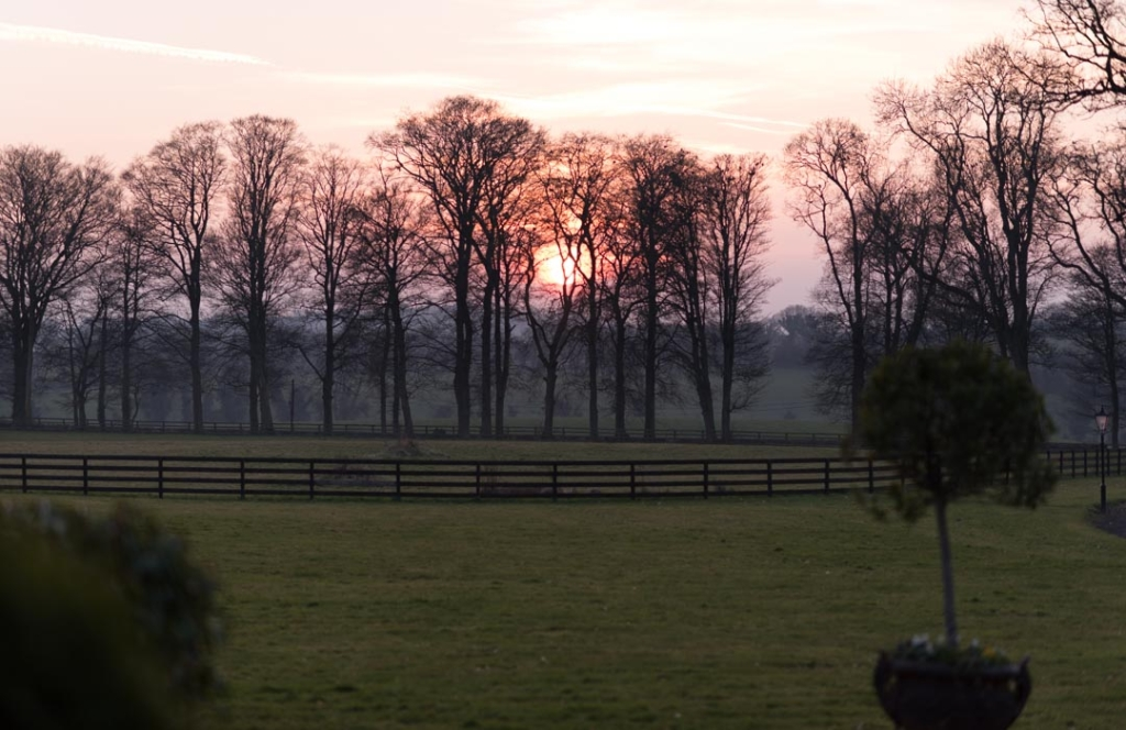 The grounds at sunset at Tankardstown House